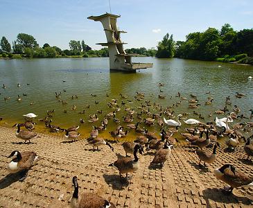Coate Water Park Swindon